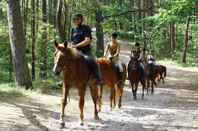 Hesteridning. Bussreiser til Polen – Hit The Road Travel