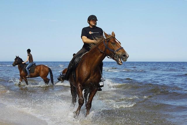 Hesteridning på stranden. Aktivitetsreiser og sportreiser til Gdansk eller Sopot – Hit The Road Travel