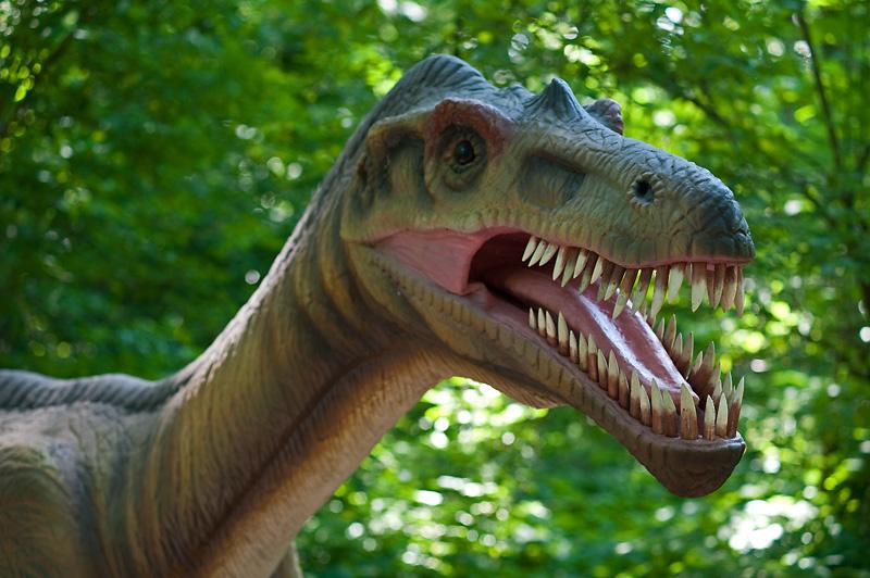 Dinopark i Malbork. Klassetur til Gdansk – Hit The Road Travel