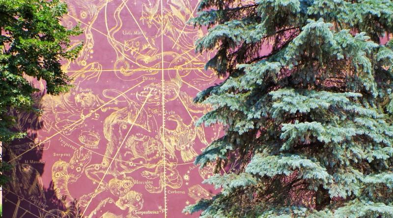 Veggmaleri i Gdansk. Pakkereiser til Polen – Nikolaus Kopernikus tur – Hit The Road Travel