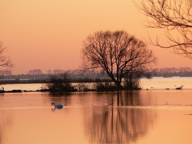 Våtmarksområder i Wartadeltaets Nasjonalpark, vintertid. Naturopplevelser i Polen – Hit The Road Travel