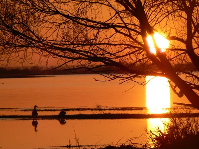 Solnedgang i Wartadeltaets Nasjonalpark
