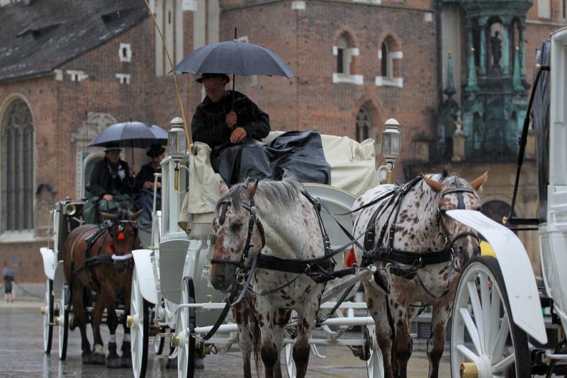 Hestedrosjer i Krakow. Reise til Krakow – Hit The Road Travel